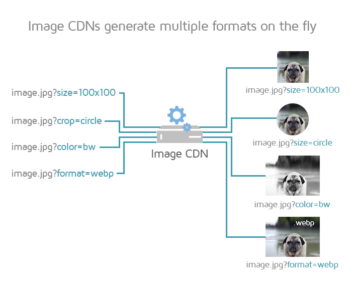 Image CDNs process images on the fly
